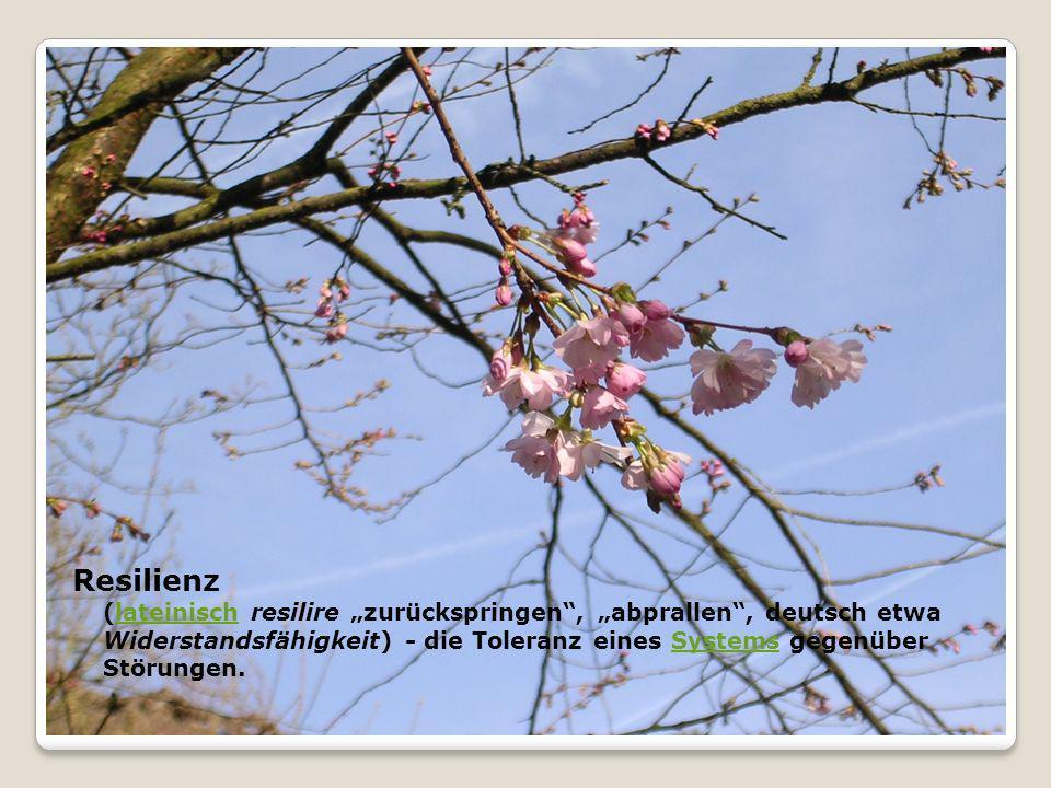 Resilienz (lateinisch resilire zurückspringen, abprallen, deutsch etwa Widerstandsfähigkeit) - die Toleranz eines Systems gegenüber Störungen.lateinis