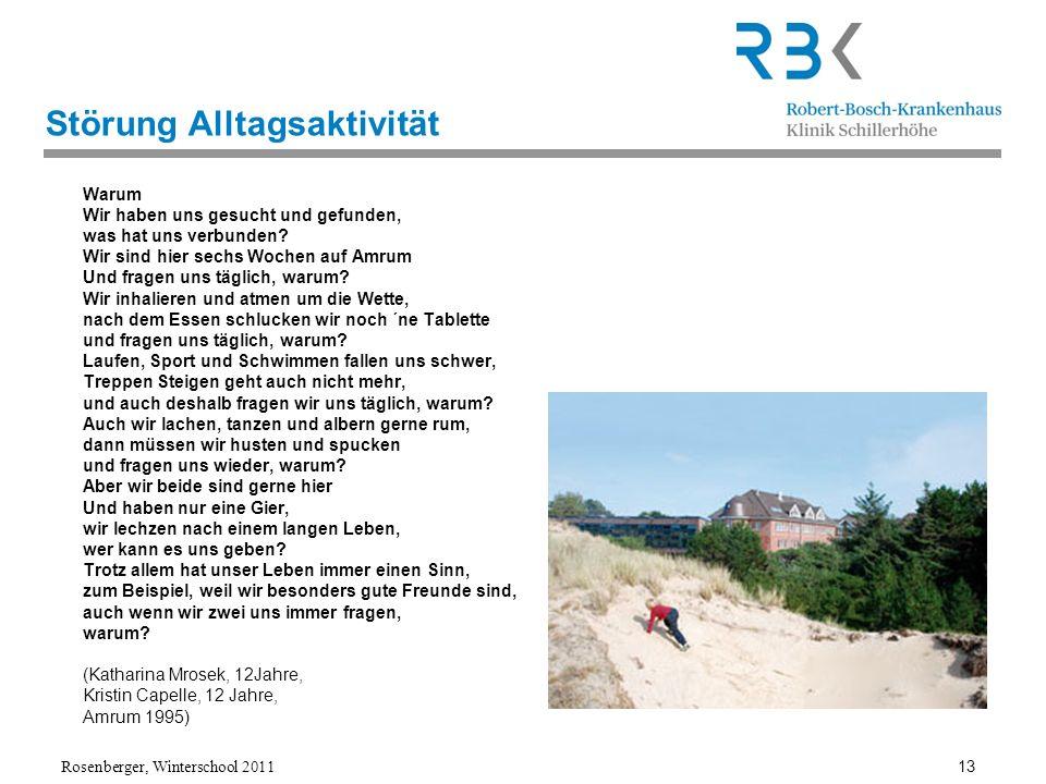 Rosenberger, Winterschool 2011 13 Störung Alltagsaktivität Warum Wir haben uns gesucht und gefunden, was hat uns verbunden? Wir sind hier sechs Wochen