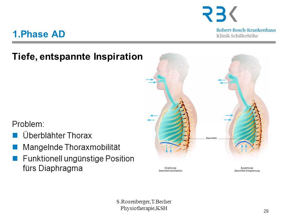 29 1.Phase AD Tiefe, entspannte Inspiration Problem: Überblähter Thorax Mangelnde Thoraxmobilität Funktionell ungünstige Position fürs Diaphragma S.Ro
