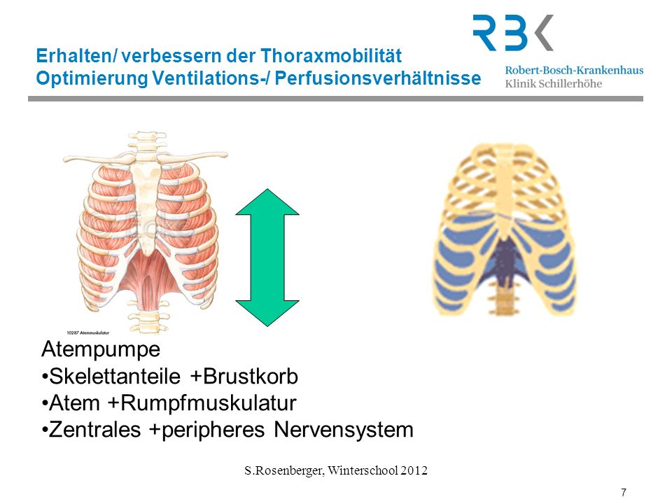 7 S.Rosenberger, Winterschool 2012 Erhalten/ verbessern der Thoraxmobilität Optimierung Ventilations-/ Perfusionsverhältnisse Atempumpe Skelettanteile