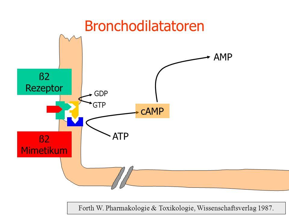 Forth W. Pharmakologie & Toxikologie, Wissenschaftsverlag 1987. Bronchodilatatoren ATP cAMP GDP GTP AMP ß2 Rezeptor ß2 Mimetikum