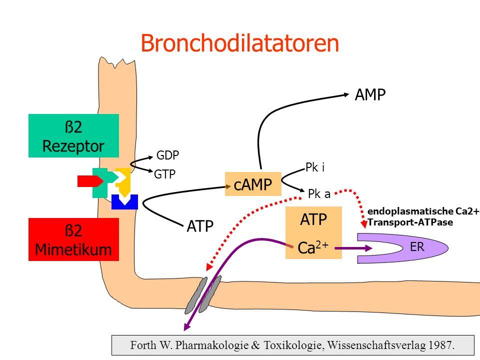 Bronchodilatatoren Forth W. Pharmakologie & Toxikologie, Wissenschaftsverlag 1987. ATP cAMP GDP GTP AMP Pk i Pk a ATP Ca 2+ ER ß2 Rezeptor ß2 Mimetiku