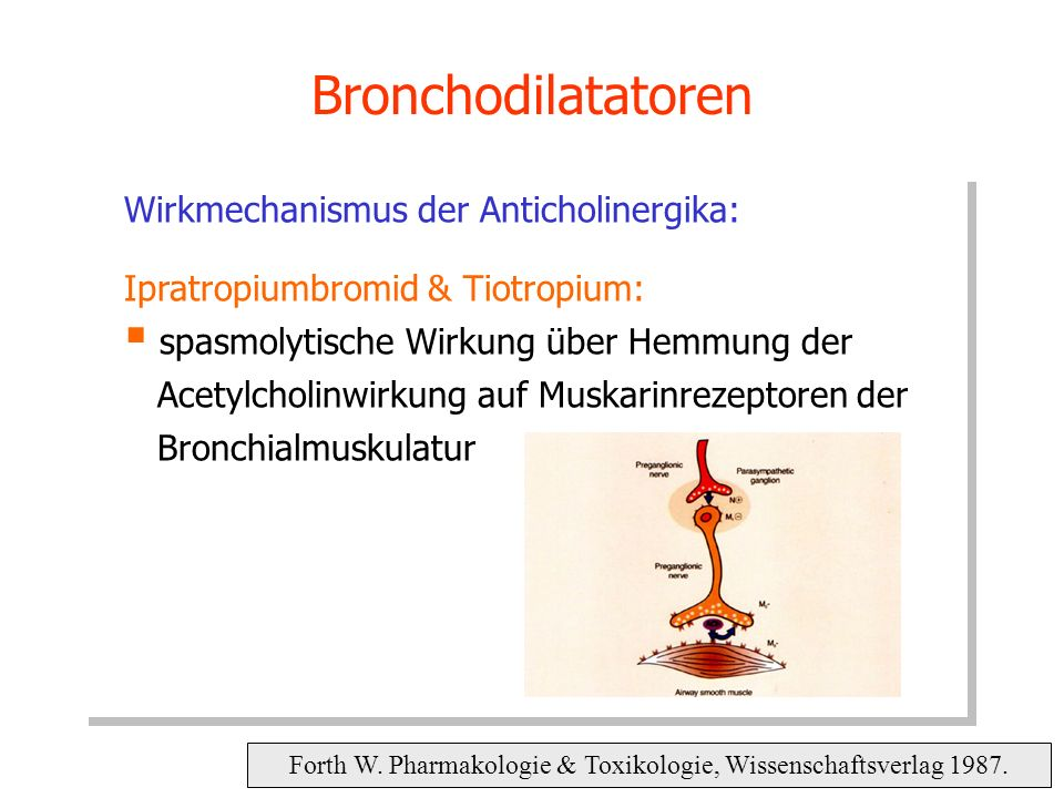 Bronchodilatatoren Forth W. Pharmakologie & Toxikologie, Wissenschaftsverlag 1987. Wirkmechanismus der Anticholinergika: Ipratropiumbromid & Tiotropiu