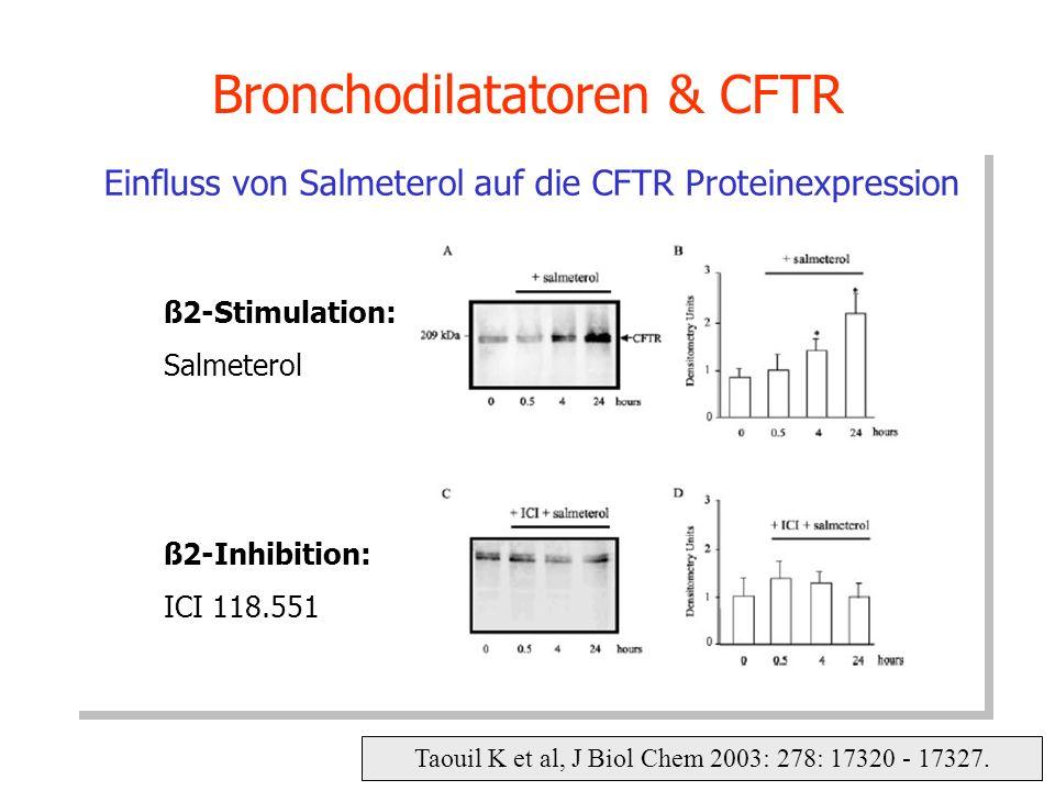 Taouil K et al, J Biol Chem 2003: 278: 17320 - 17327. Bronchodilatatoren & CFTR Einfluss von Salmeterol auf die CFTR Proteinexpression ß2-Stimulation: