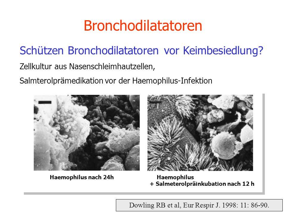 Dowling RB et al, Eur Respir J. 1998: 11: 86-90. Bronchodilatatoren Schützen Bronchodilatatoren vor Keimbesiedlung? Zellkultur aus Nasenschleimhautzel