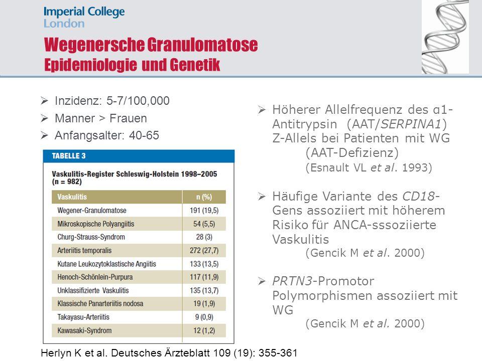 Wegenersche Granulomatose Epidemiologie und Genetik Inzidenz: 5-7/100,000 Manner > Frauen Anfangsalter: 40-65 Höherer Allelfrequenz des α1- Antitrypsi