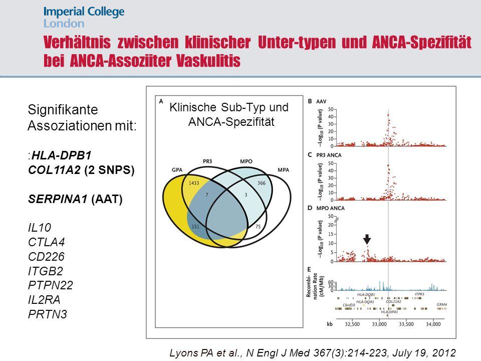 Verhältnis zwischen klinischer Unter-typen und ANCA-Spezifität bei ANCA-Assoziiter Vaskulitis Lyons PA et al. N Engl J Med 2012;367:214-223 Klinische