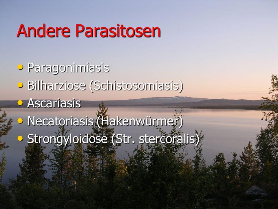 Andere Parasitosen Paragonimiasis Paragonimiasis Bilharziose (Schistosomiasis) Bilharziose (Schistosomiasis) Ascariasis Ascariasis Necatoriasis (Haken