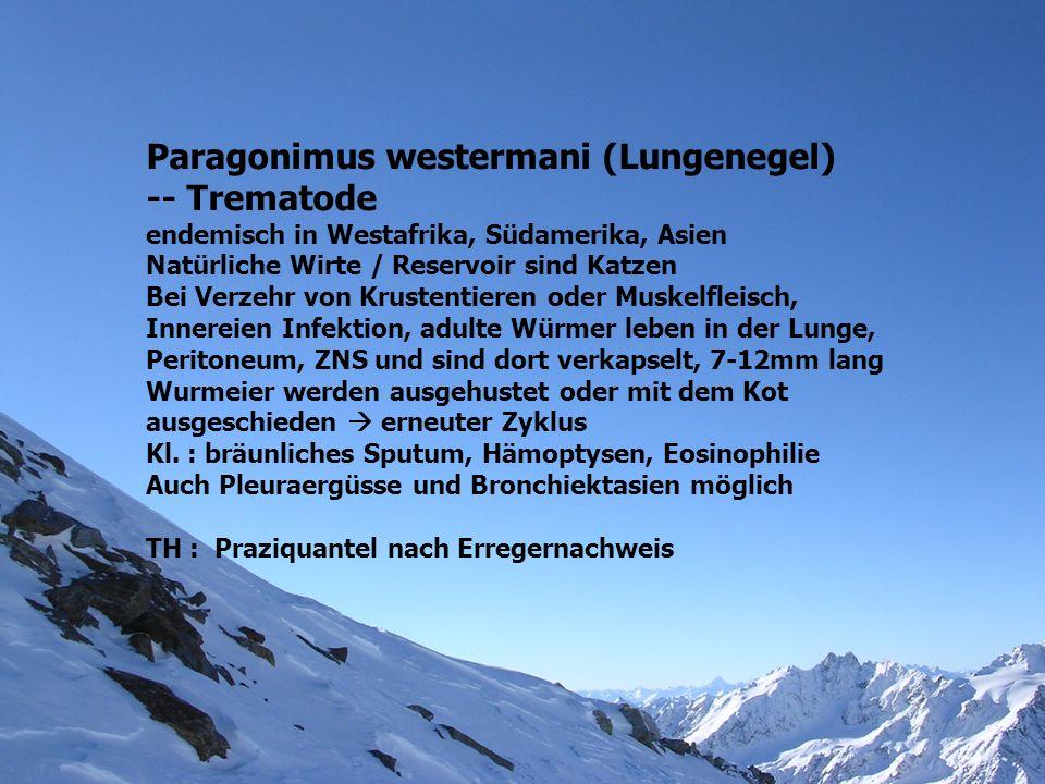 Paragonimus westermani (Lungenegel) -- Trematode endemisch in Westafrika, Südamerika, Asien Natürliche Wirte / Reservoir sind Katzen Bei Verzehr von K