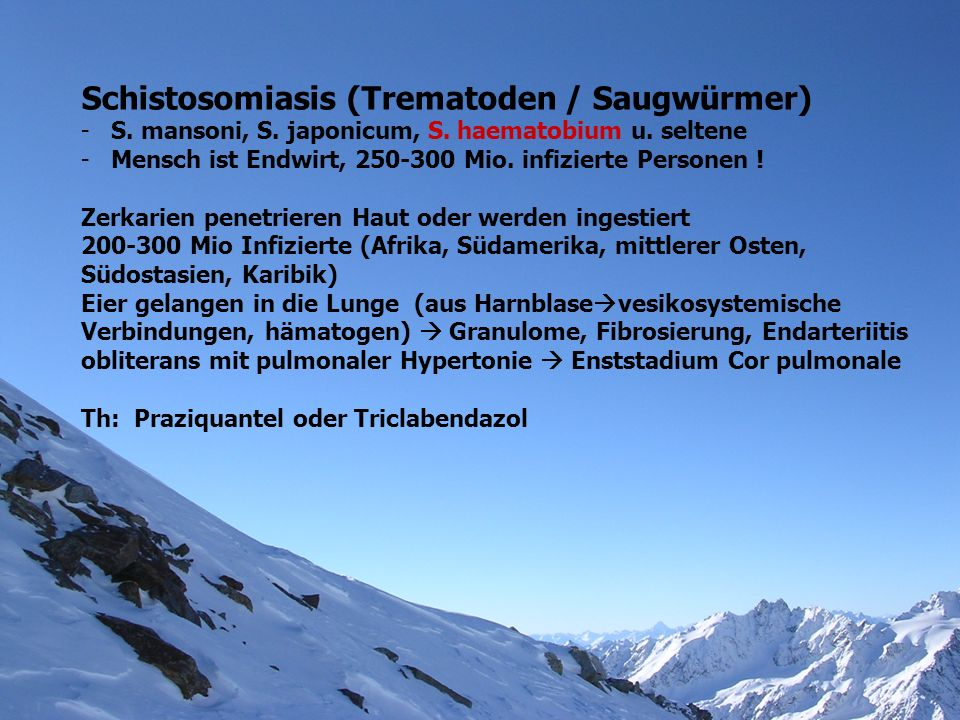 Schistosomiasis (Trematoden / Saugwürmer) -S. mansoni, S. japonicum, S. haematobium u. seltene -Mensch ist Endwirt, 250-300 Mio. infizierte Personen !