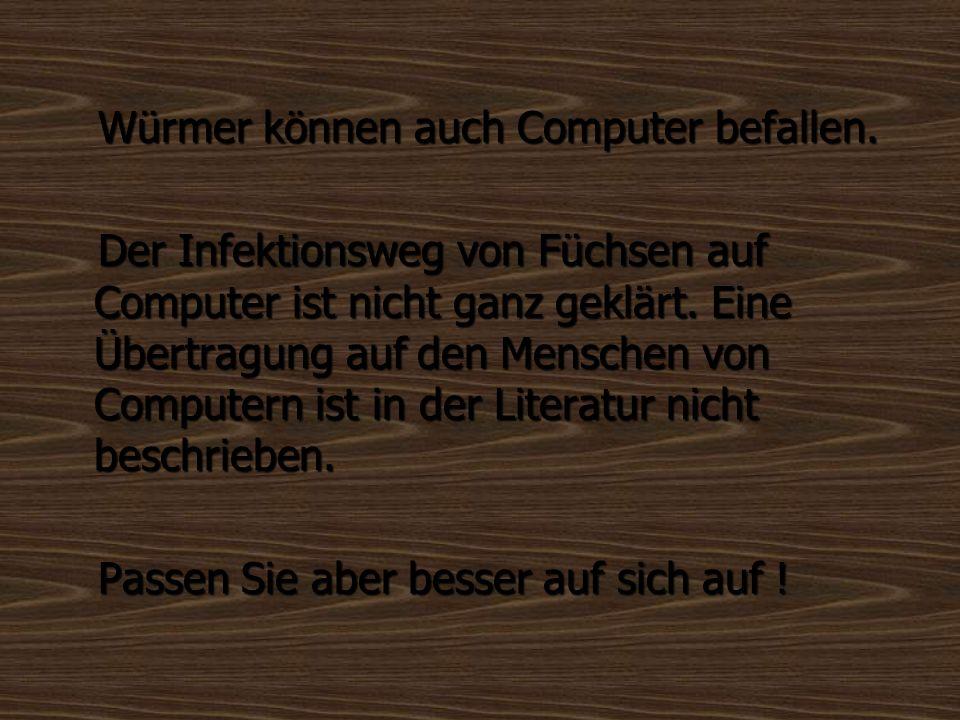 Würmer können auch Computer befallen. Würmer können auch Computer befallen. Der Infektionsweg von Füchsen auf Computer ist nicht ganz geklärt. Eine Üb