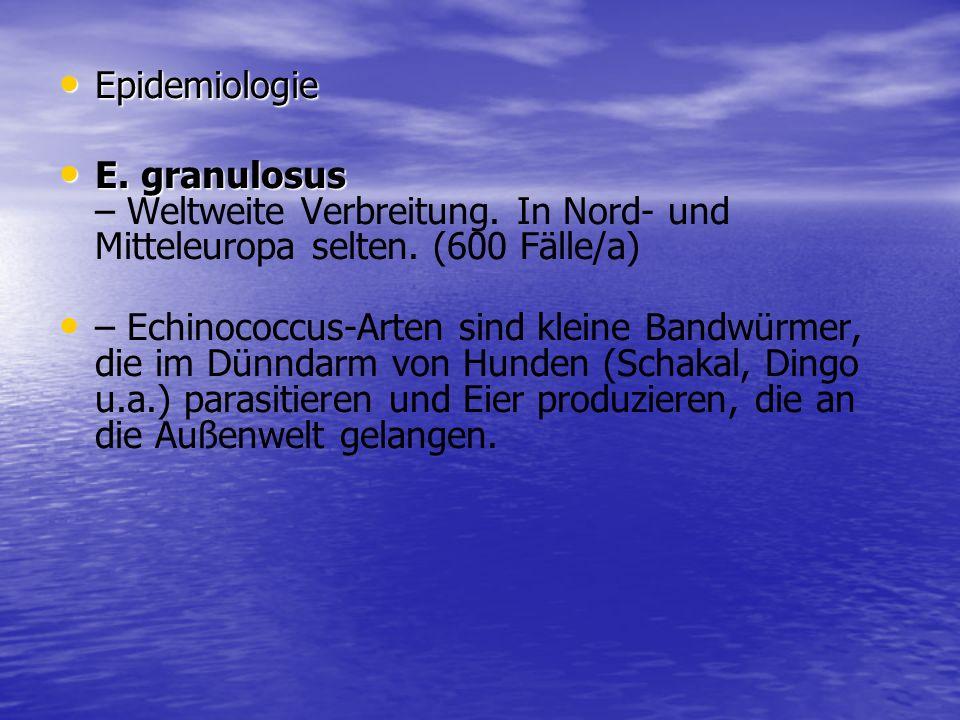 Epidemiologie Epidemiologie E. granulosus E. granulosus – Weltweite Verbreitung. In Nord- und Mitteleuropa selten. (600 Fälle/a) – Echinococcus-Arten