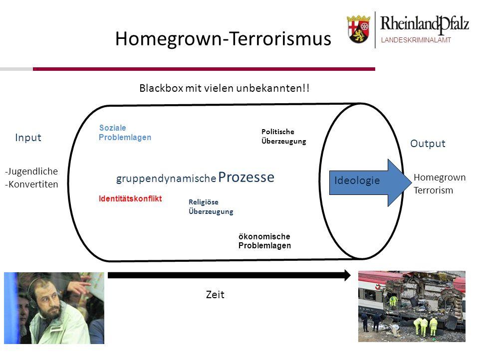 LANDESKRIMINALAMT Homegrown-Terrorismus Zeit -Jugendliche -Konvertiten Homegrown Terrorism Input Output Blackbox mit vielen unbekannten!! Ideologie So