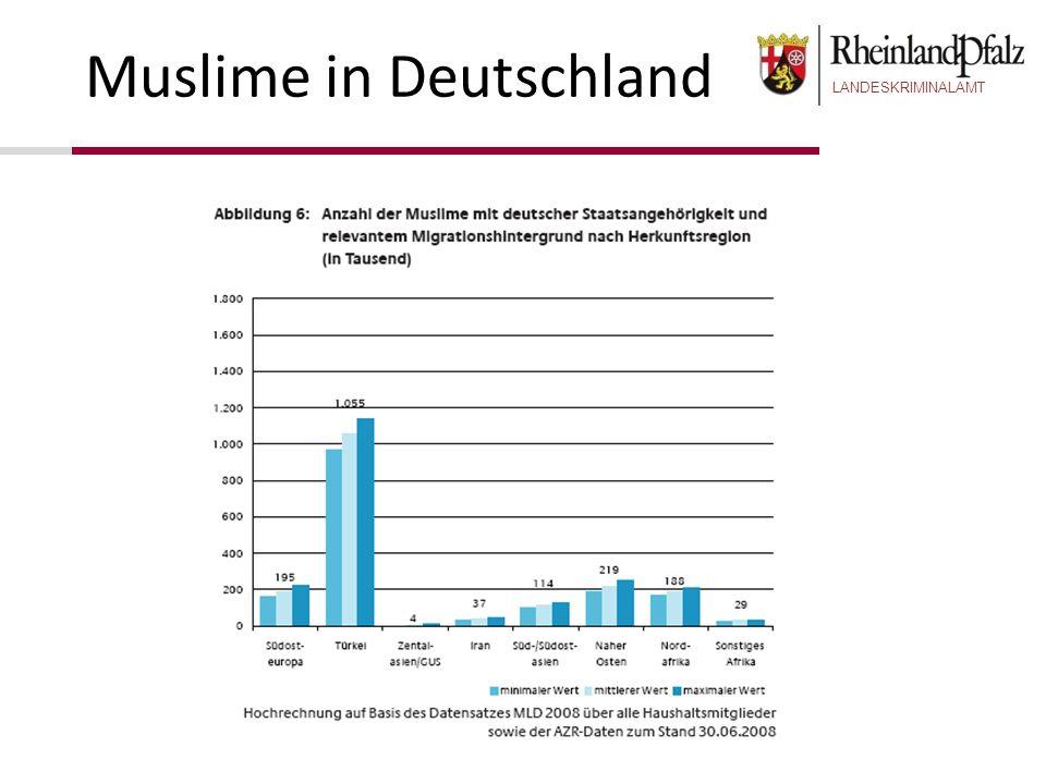 LANDESKRIMINALAMT Muslime in Deutschland Nicht die Religion ist der Schlüssel zum Verständnis der Gesellschaft, sondern die Gesellschaft ist der Schlüssel zum Verständnis der Religiosität Wir müssen versuchen zu verstehen, wie sich die politischen Verhältnisse in der Realität entwickelten und nicht immer das ideale islamische Gemeinwesen beschreiben