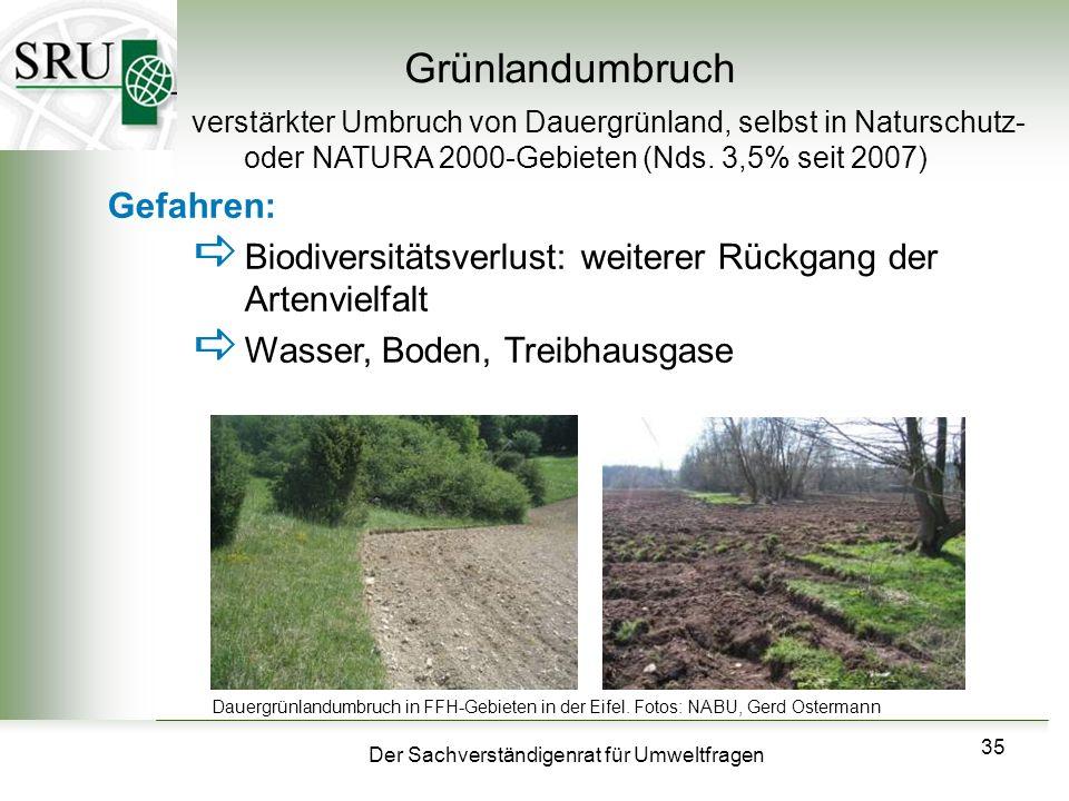 Der Sachverständigenrat für Umweltfragen 35 Grünlandumbruch verstärkter Umbruch von Dauergrünland, selbst in Naturschutz- oder NATURA 2000-Gebieten (N