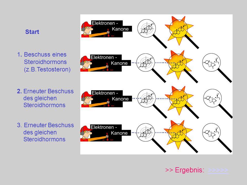 Start >> Ergebnis: >>>>>>>>>> 1. Beschuss eines Steroidhormons (z.B.Testosteron) 2. Erneuter Beschuss des gleichen Steroidhormons 3. Erneuter Beschuss