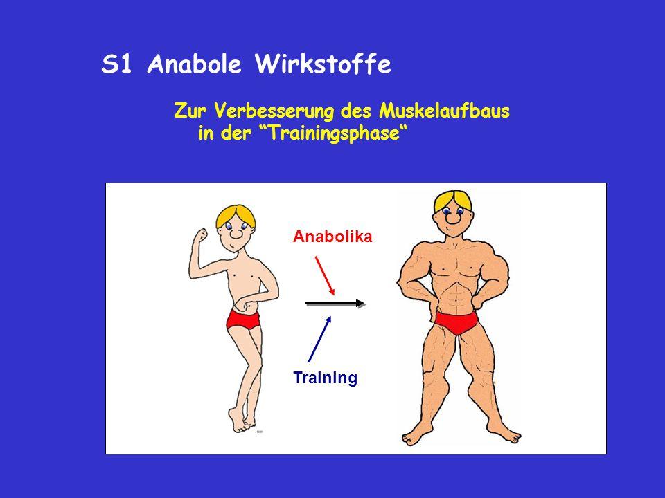 S1 Anabole Wirkstoffe Zur Verbesserung des Muskelaufbaus in der Trainingsphase Anabolika Training