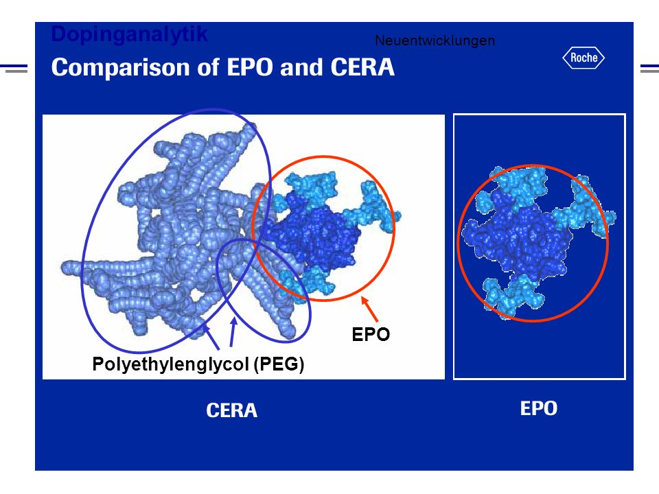 Neuentwicklungen EPO Polyethylenglycol (PEG)