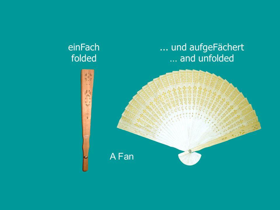 einFach folded... und aufgeFächert … and unfolded A Fan