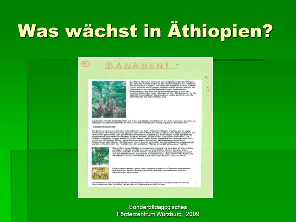 Sonderpädagogisches Förderzentrum Würzburg, 2009 Was wächst in Äthiopien?