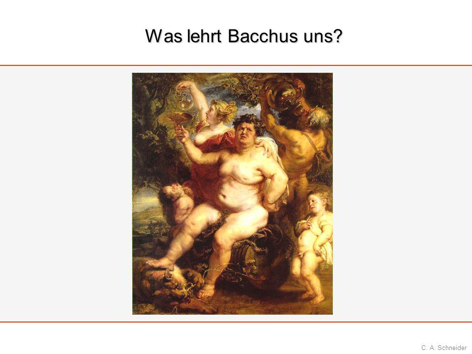 C. A. Schneider Was lehrt Bacchus uns?