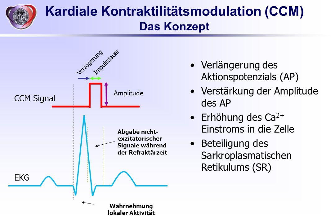 Wahrnehmung lokaler Aktivität Abgabe nicht- exzitatorischer Signale während der Refraktärzeit Verzögerung Impulsdauer Amplitude Verlängerung des Aktio