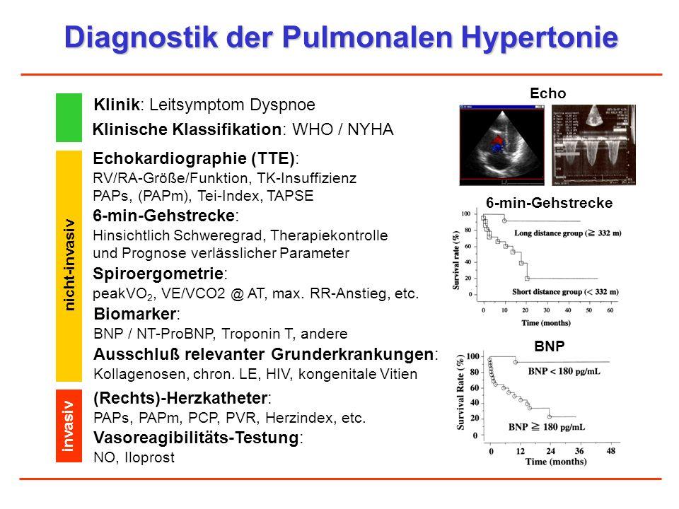 Diagnostik der Pulmonalen Hypertonie Klinik: Leitsymptom Dyspnoe Echokardiographie (TTE): RV/RA-Größe/Funktion, TK-Insuffizienz PAPs, (PAPm), Tei-Inde