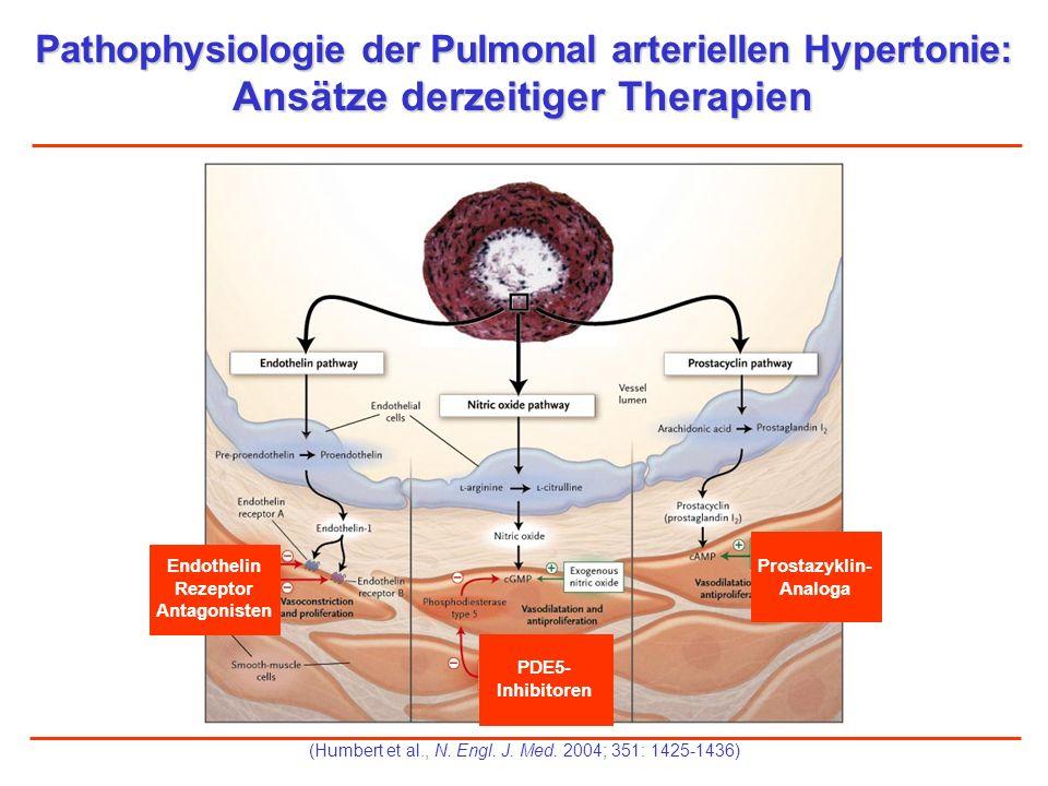 Pathophysiologie der Pulmonal arteriellen Hypertonie: Ansätze derzeitiger Therapien 1 2 3 (Humbert et al., N. Engl. J. Med. 2004; 351: 1425-1436) Endo