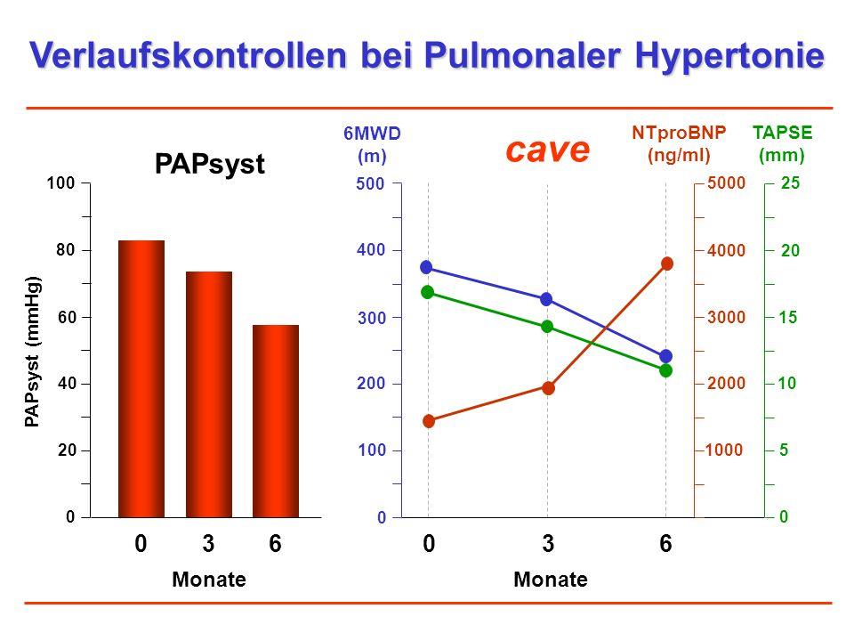 Verlaufskontrollen bei Pulmonaler Hypertonie PAPsyst 036 Monate PAPsyst (mmHg) cave 036 Monate 6MWD (m) 0 100 80 60 40 20 500 100 400 300 200 0 NTproB