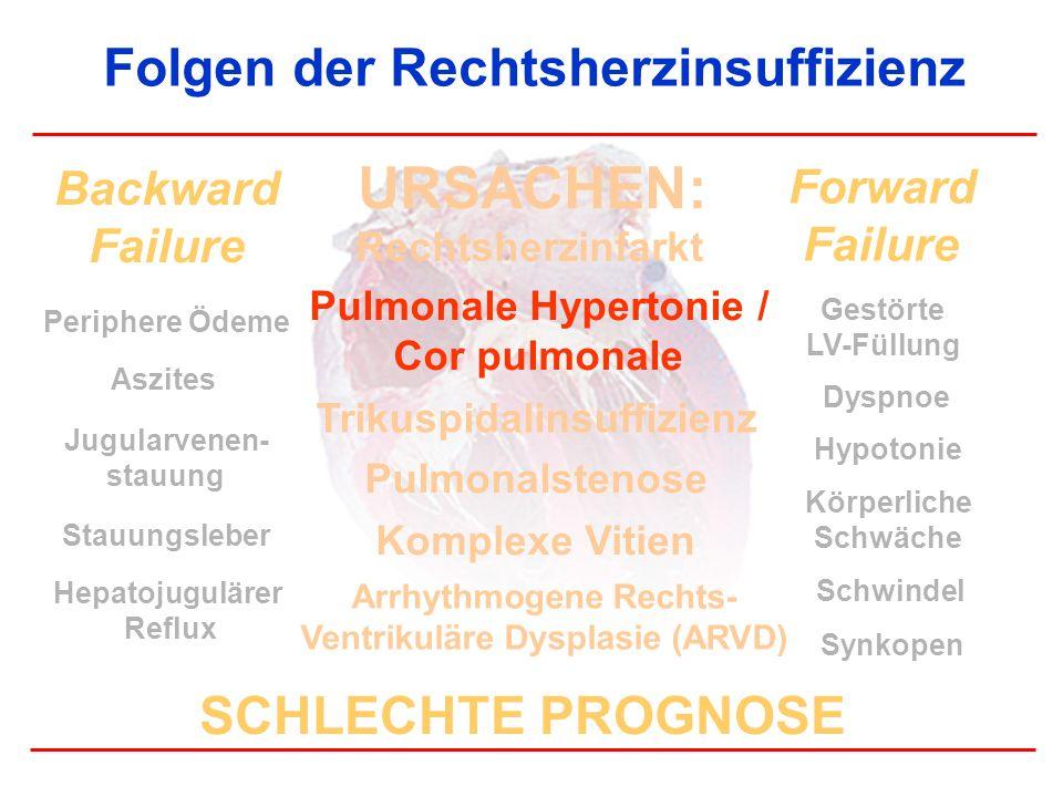 Folgen der Rechtsherzinsuffizienz Periphere Ödeme Aszites Backward Failure Forward Failure Gestörte LV-Füllung Dyspnoe Schwindel Synkopen Hypotonie St