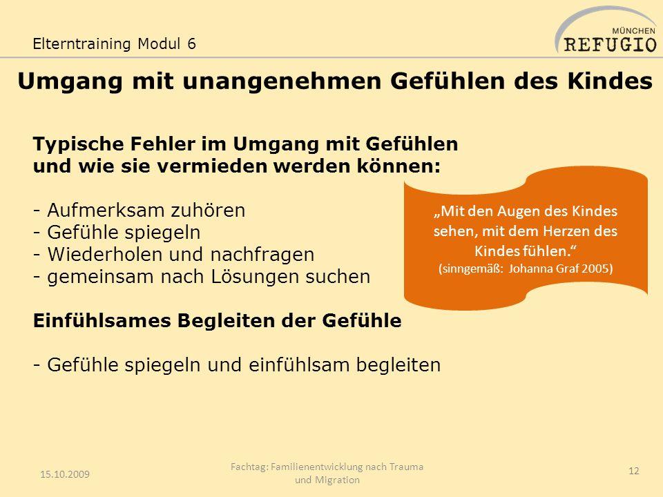 Umgang mit unangenehmen Gefühlen des Kindes 15.10.2009 Fachtag: Familienentwicklung nach Trauma und Migration 12 Elterntraining Modul 6 Mit den Augen