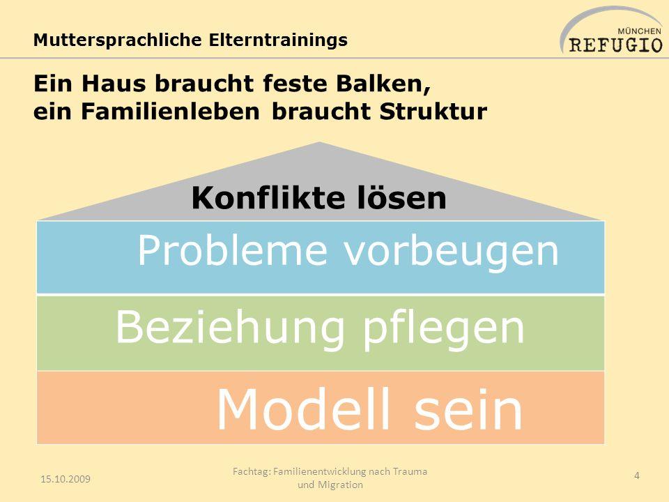 Ein Haus braucht feste Balken, ein Familienleben braucht Struktur 15.10.2009 Fachtag: Familienentwicklung nach Trauma und Migration 4 Probleme vorbeug