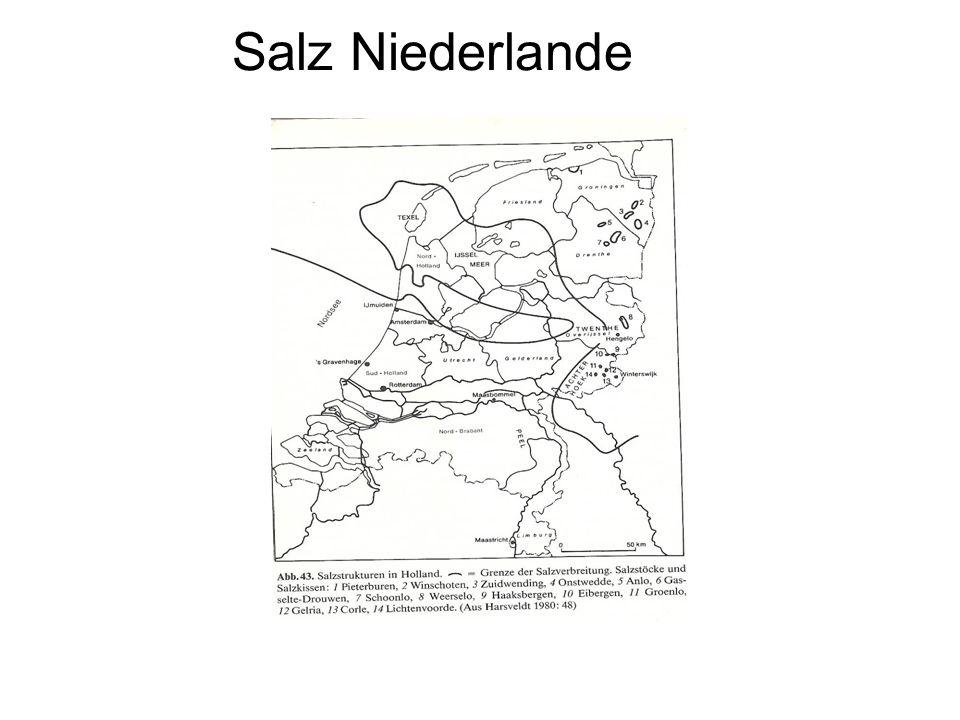 Salz Niederlande