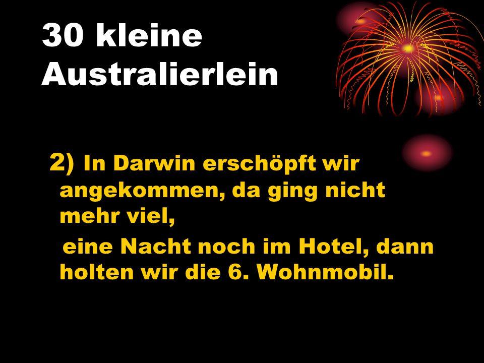 30 kleine Australierlein 2) In Darwin erschöpft wir angekommen, da ging nicht mehr viel, eine Nacht noch im Hotel, dann holten wir die 6.