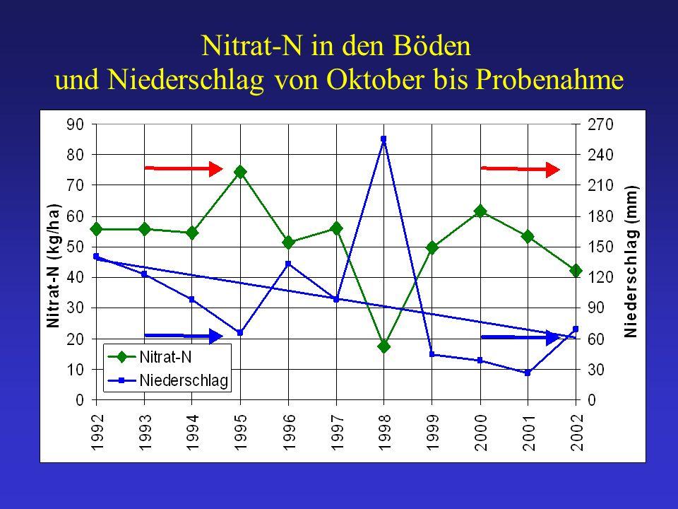 Nitrat-N in den Böden und Niederschlag von Oktober bis Probenahme