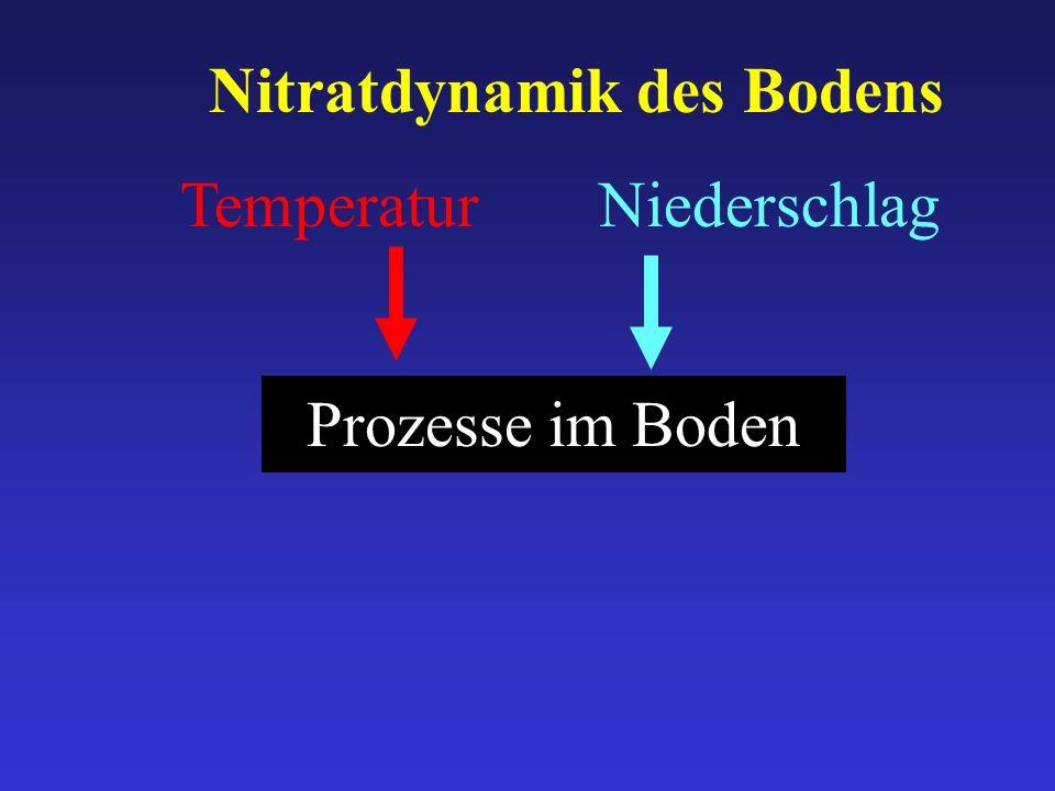 Temperatur Prozesse im Boden Niederschlag Nitratdynamik des Bodens
