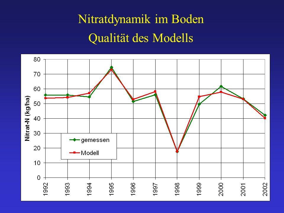 Qualität des Modells Nitratdynamik im Boden