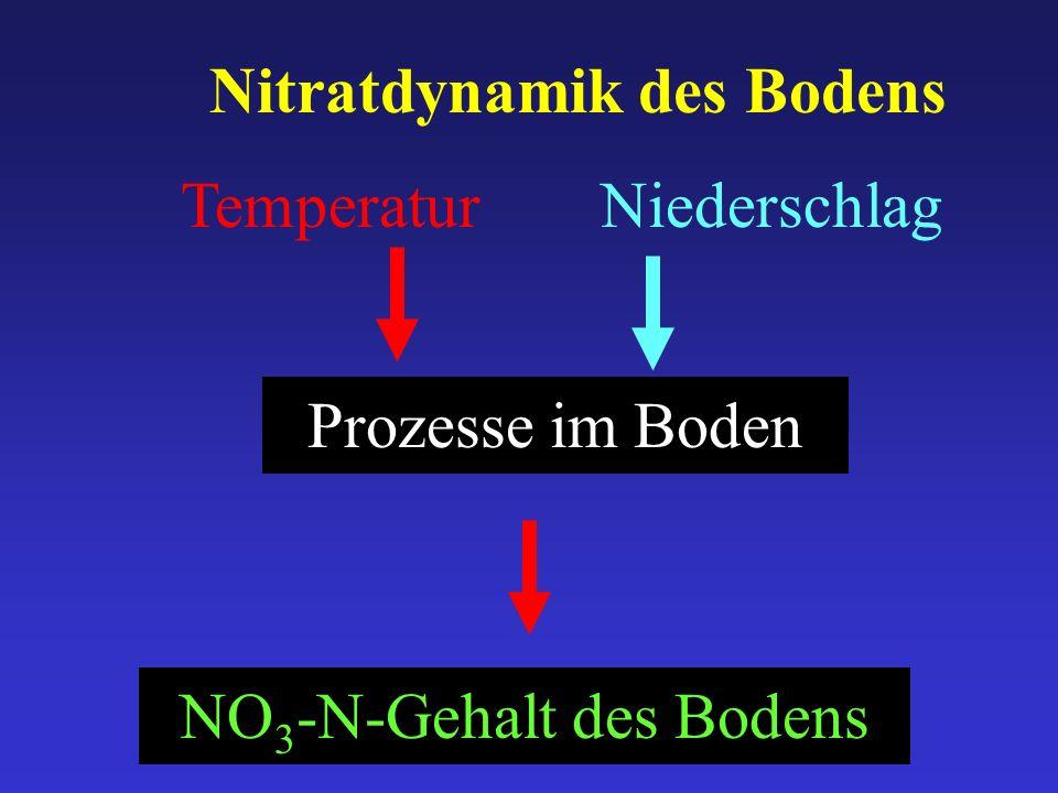 Temperatur Prozesse im Boden Niederschlag Nitratdynamik des Bodens NO 3 -N-Gehalt des Bodens