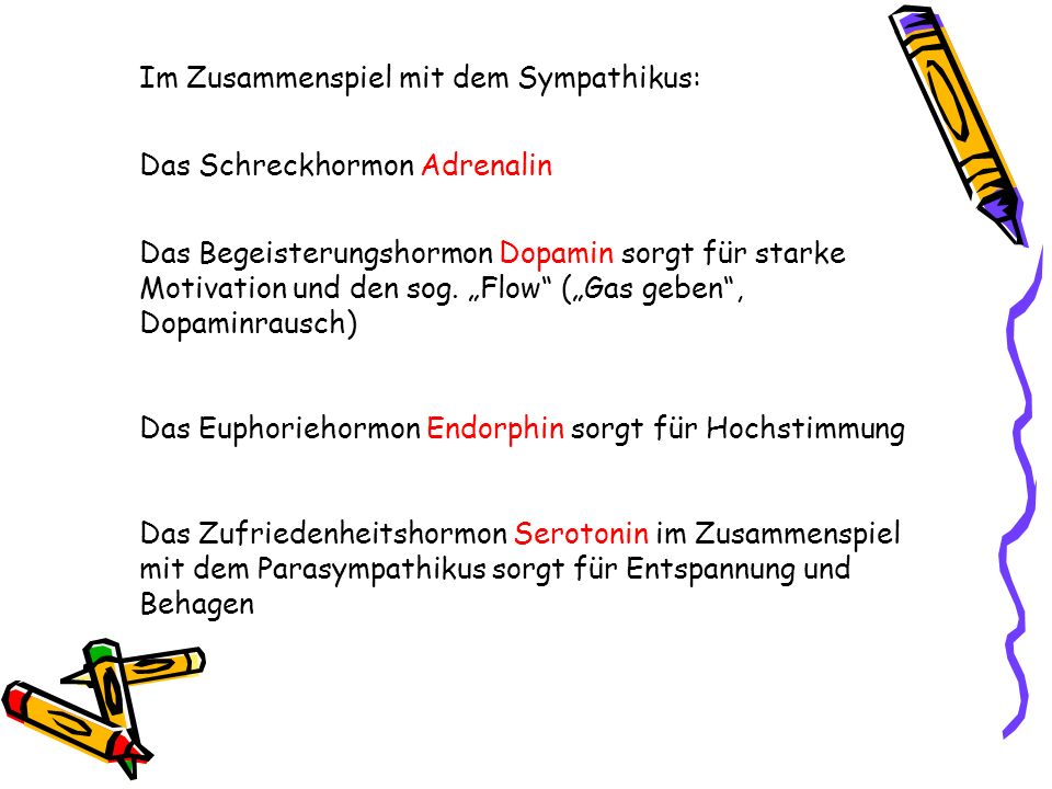 Im Zusammenspiel mit dem Sympathikus: Das Schreckhormon Adrenalin Das Begeisterungshormon Dopamin sorgt für starke Motivation und den sog. Flow (Gas g