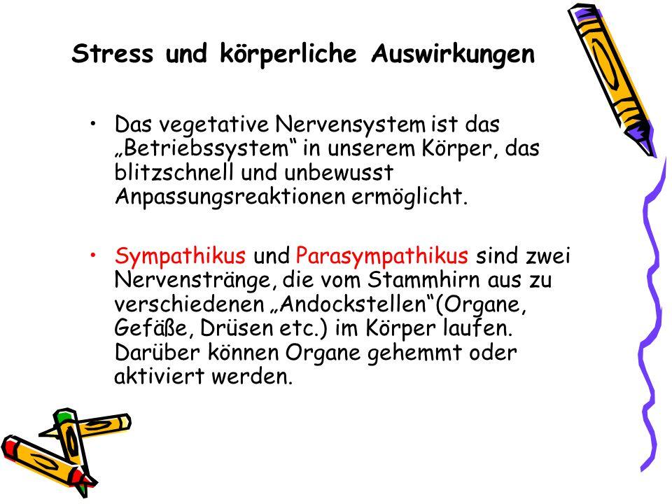 Stress und körperliche Auswirkungen Das vegetative Nervensystem ist das Betriebssystem in unserem Körper, das blitzschnell und unbewusst Anpassungsrea