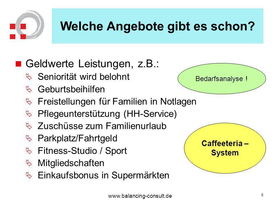 www.balancing-consult.de 7 Was haben die Unternehmen davon.