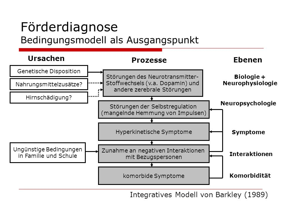 Förderdiagnose Bedingungsmodell als Ausgangspunkt Ursachen Prozesse Ebenen Genetische Disposition Nahrungsmittelzusätze? Hirnschädigung? Störungen des