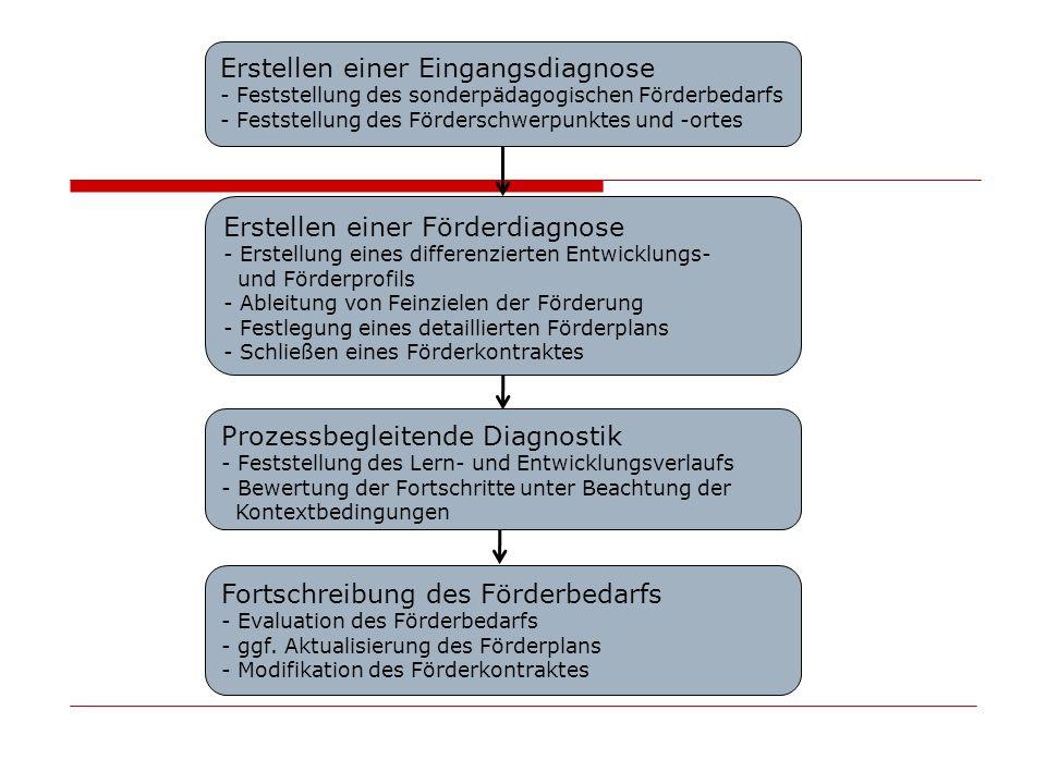 Erstellen einer Eingangsdiagnose - Feststellung des sonderpädagogischen Förderbedarfs - Feststellung des Förderschwerpunktes und -ortes Erstellen eine