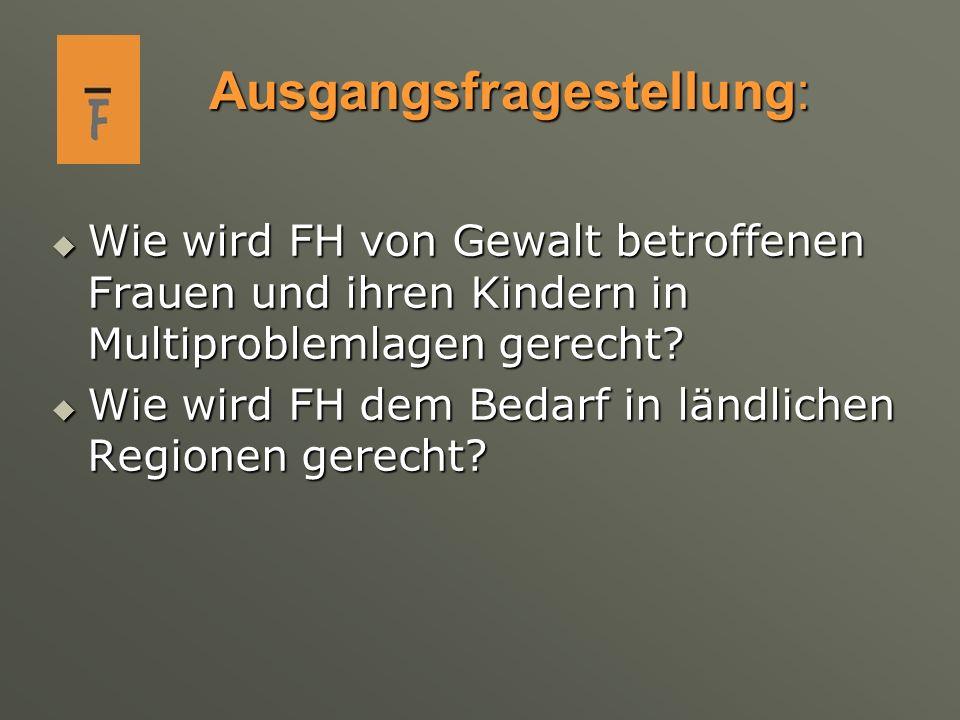 Ausgangsfragestellung: Wie wird FH von Gewalt betroffenen Frauen und ihren Kindern in Multiproblemlagen gerecht? Wie wird FH von Gewalt betroffenen Fr