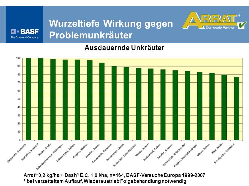 Arrat ® 0,2 kg/ha + Dash ® E.C. 1,0 l/ha, n=464, BASF-Versuche Europa 1999-2007 * bei verzetteltem Auflauf, Wiederaustrieb Folgebehandlung notwendig A