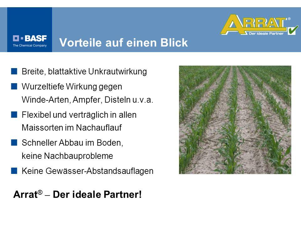 Breite, blattaktive Unkrautwirkung Wurzeltiefe Wirkung gegen Winde-Arten, Ampfer, Disteln u.v.a. Flexibel und verträglich in allen Maissorten im Nacha