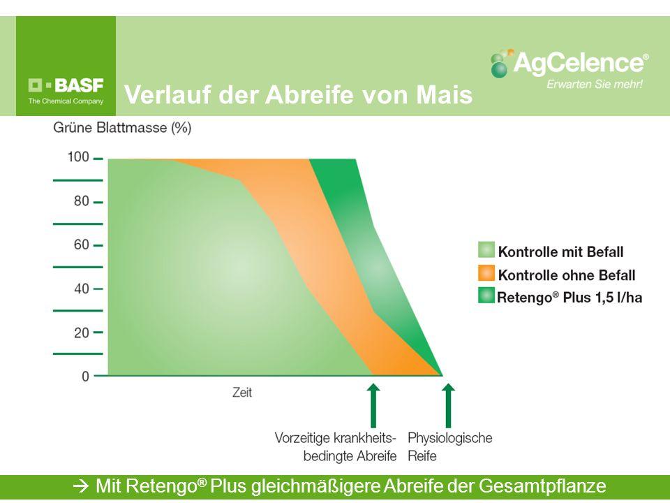 Verlauf der Abreife von Mais Mit Retengo ® Plus gleichmäßigere Abreife der Gesamtpflanze