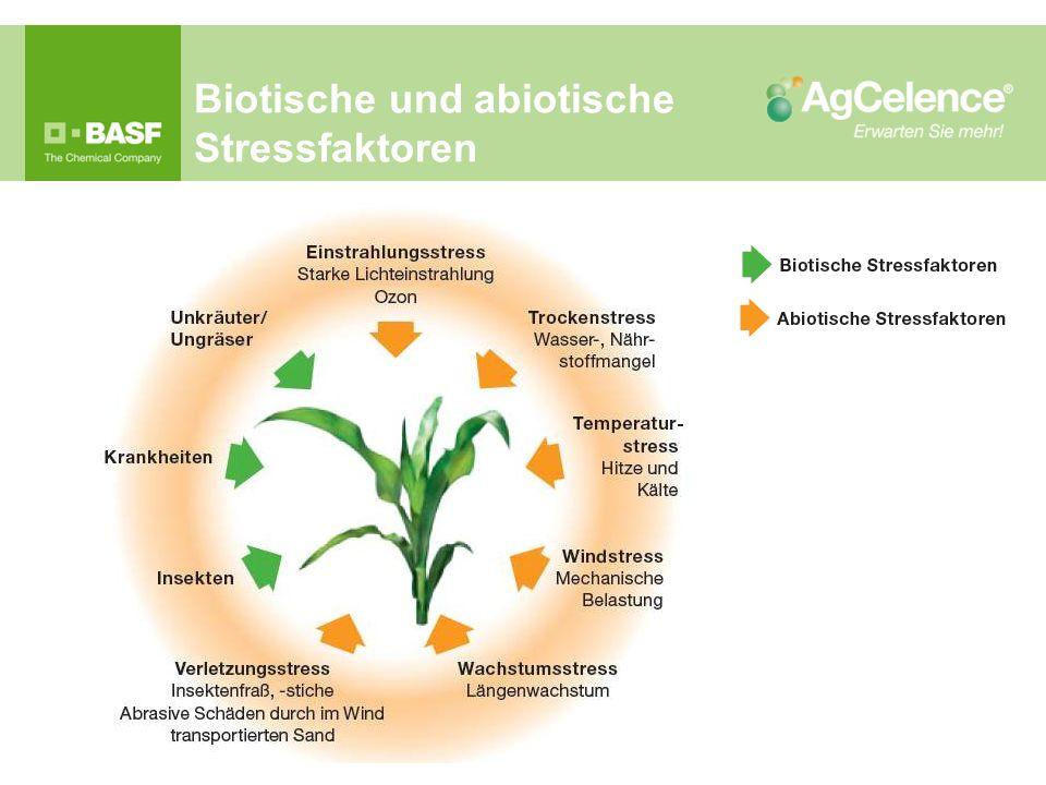 Biotische und abiotische Stressfaktoren