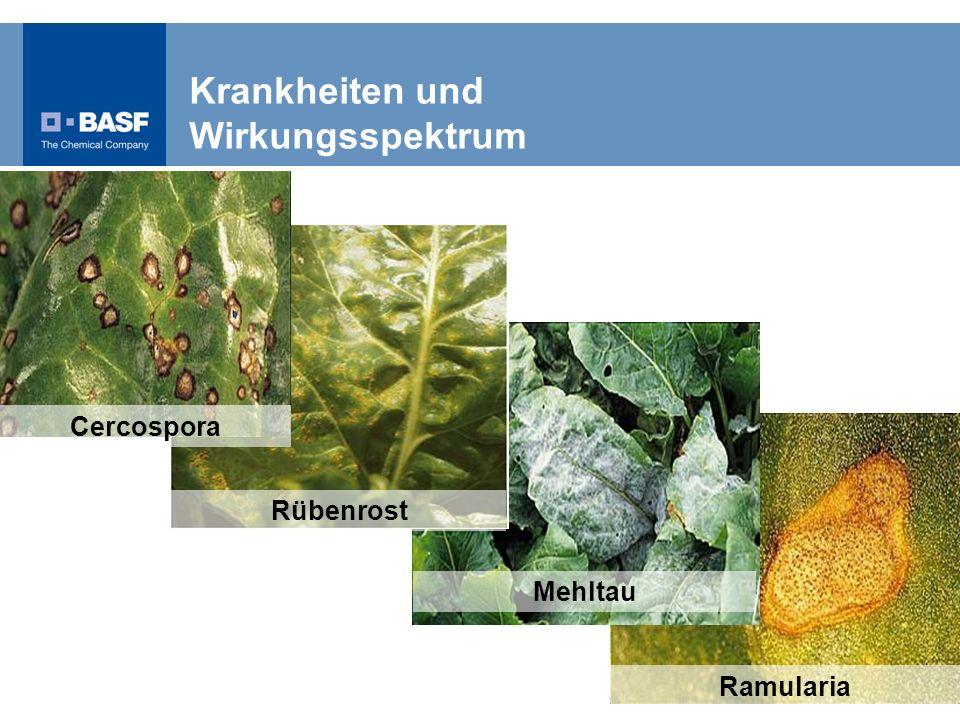 Ramularia Mehltau Rübenrost Cercospora Krankheiten und Wirkungsspektrum