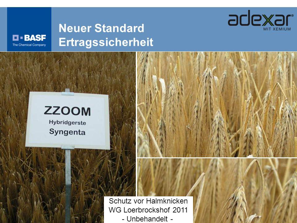 Neuer Standard Ertragssicherheit Schutz vor Halmknicken WG Loerbrockshof 2011 - Unbehandelt -